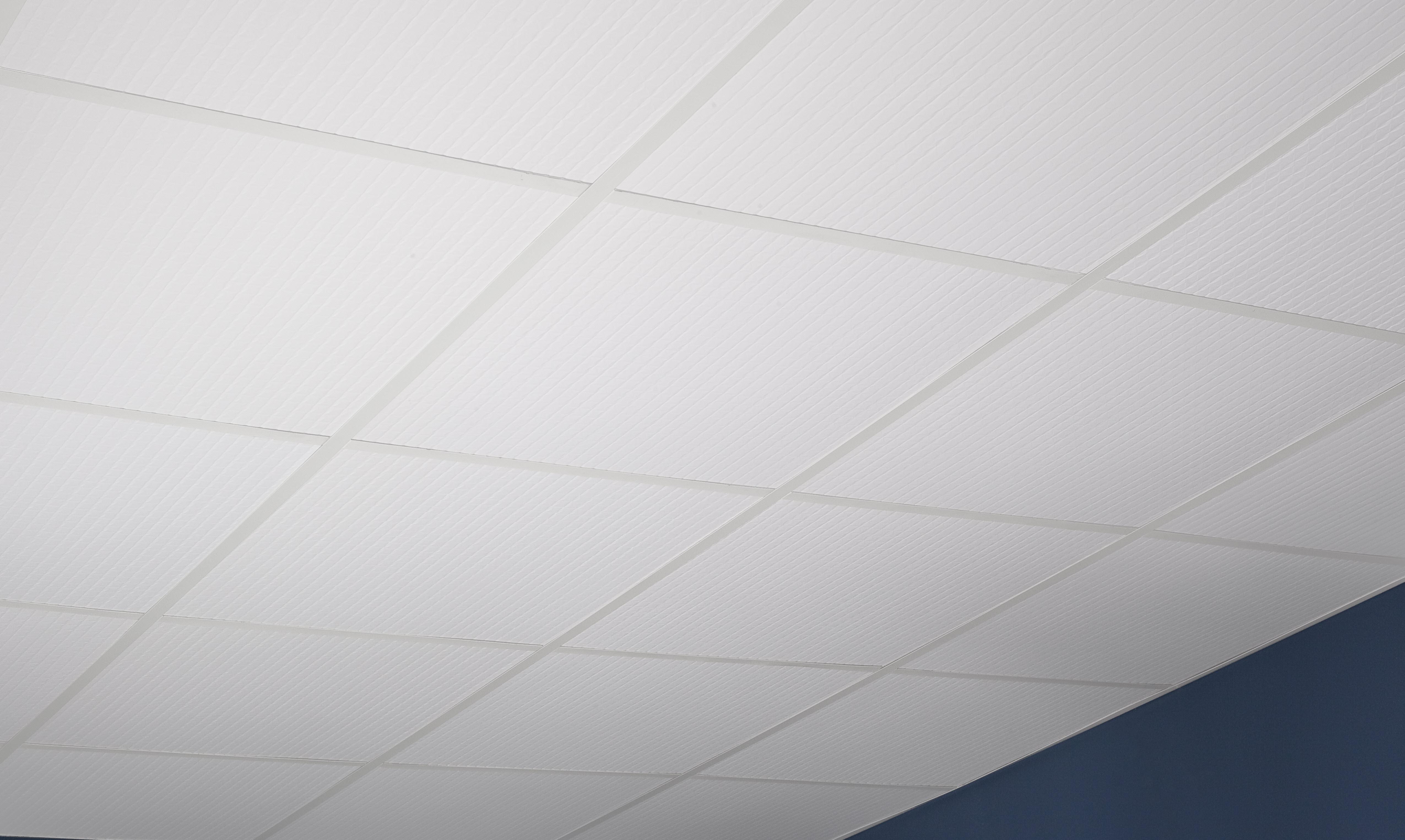 Bathroom ceiling tiles genesis classic pro doublecrazyfo Images